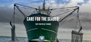 Care for the seabed, vote for pulse fishing